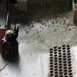 ofir-blog-čišćenje-slika4
